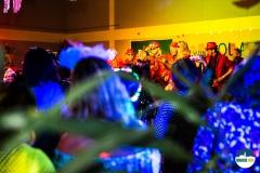 Carnaval-c-Ron-Beenen-9391