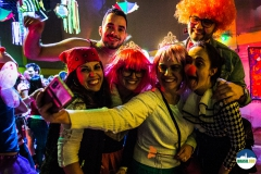Carnaval-c-Ron-Beenen-9460